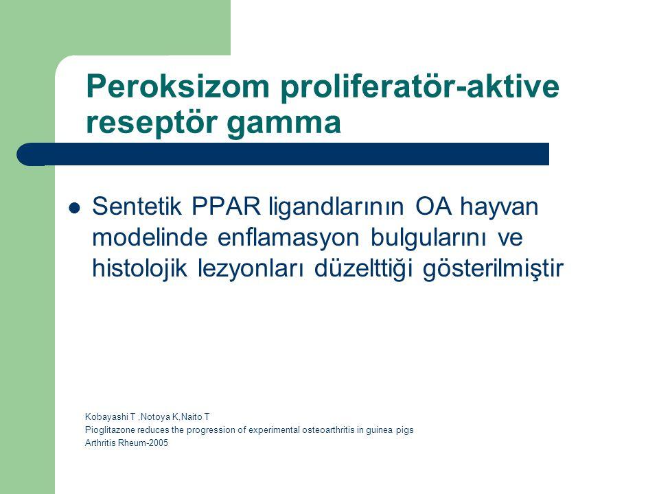 Peroksizom proliferatör-aktive reseptör gamma