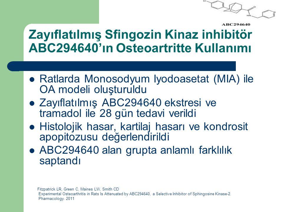 Zayıflatılmış Sfingozin Kinaz inhibitör ABC294640'ın Osteoartritte Kullanımı