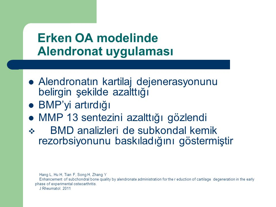 Erken OA modelinde Alendronat uygulaması