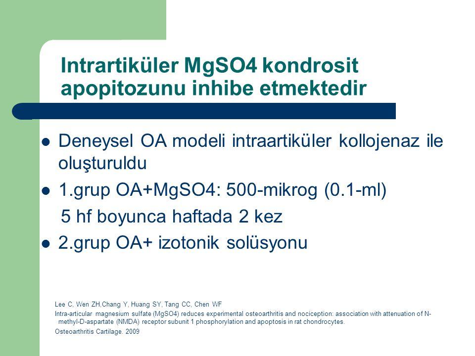 Intrartiküler MgSO4 kondrosit apopitozunu inhibe etmektedir