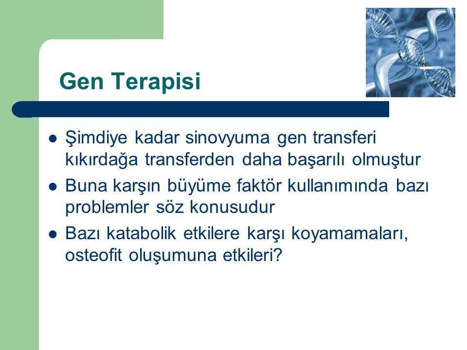 Gen Terapisi Şimdiye kadar sinovyuma gen transferi kıkırdağa transferden daha başarılı olmuştur.