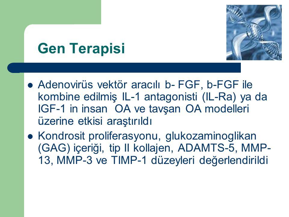 Gen Terapisi