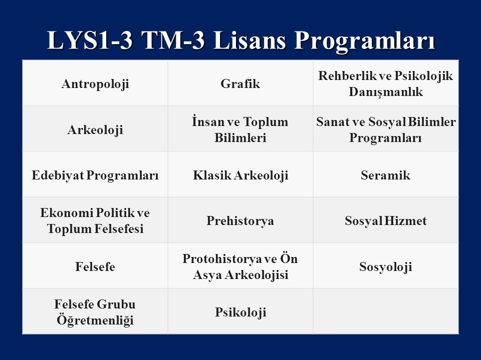 LYS1-3 TM-3 Lisans Programları