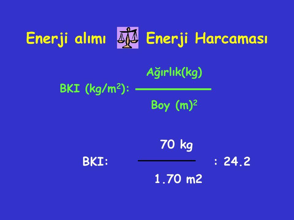 Enerji alımı Enerji Harcaması
