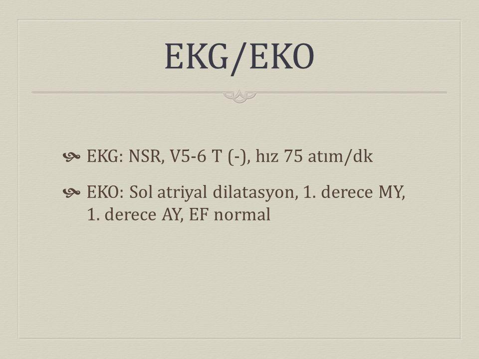 EKG/EKO EKG: NSR, V5-6 T (-), hız 75 atım/dk