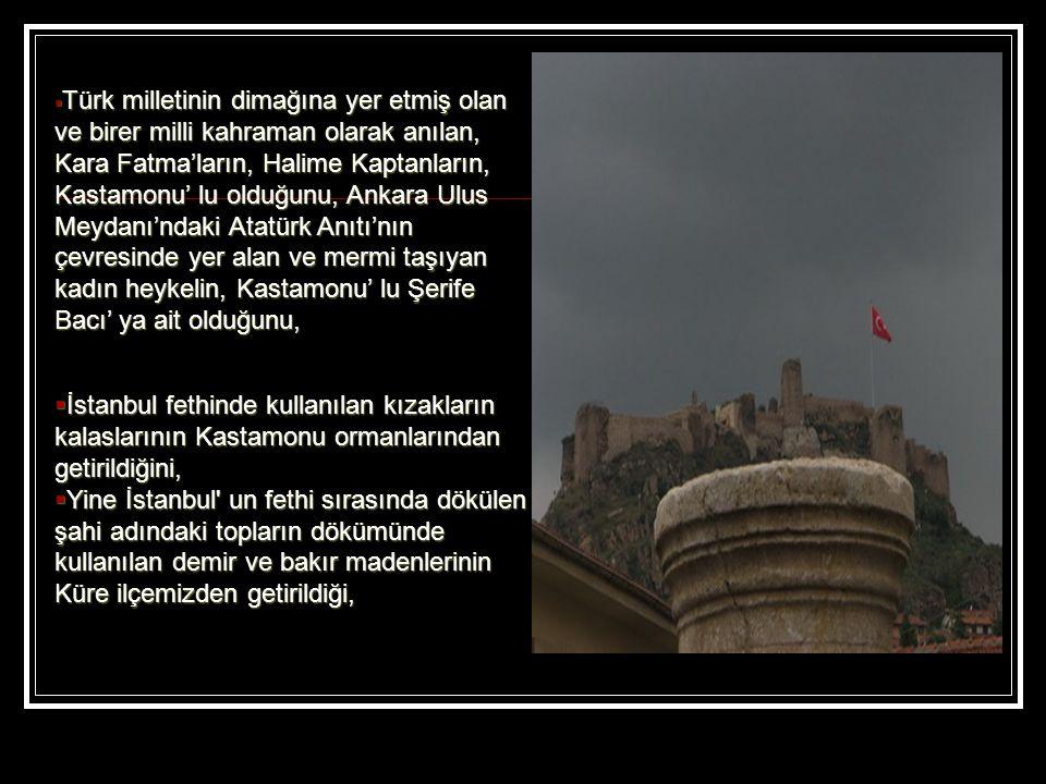 Türk milletinin dimağına yer etmiş olan ve birer milli kahraman olarak anılan, Kara Fatma'ların, Halime Kaptanların, Kastamonu' lu olduğunu, Ankara Ulus Meydanı'ndaki Atatürk Anıtı'nın çevresinde yer alan ve mermi taşıyan kadın heykelin, Kastamonu' lu Şerife Bacı' ya ait olduğunu,