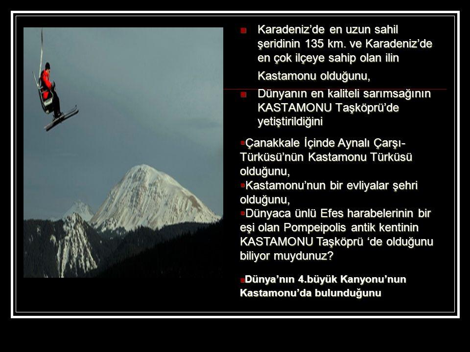 Çanakkale İçinde Aynalı Çarşı-Türküsü'nün Kastamonu Türküsü olduğunu,