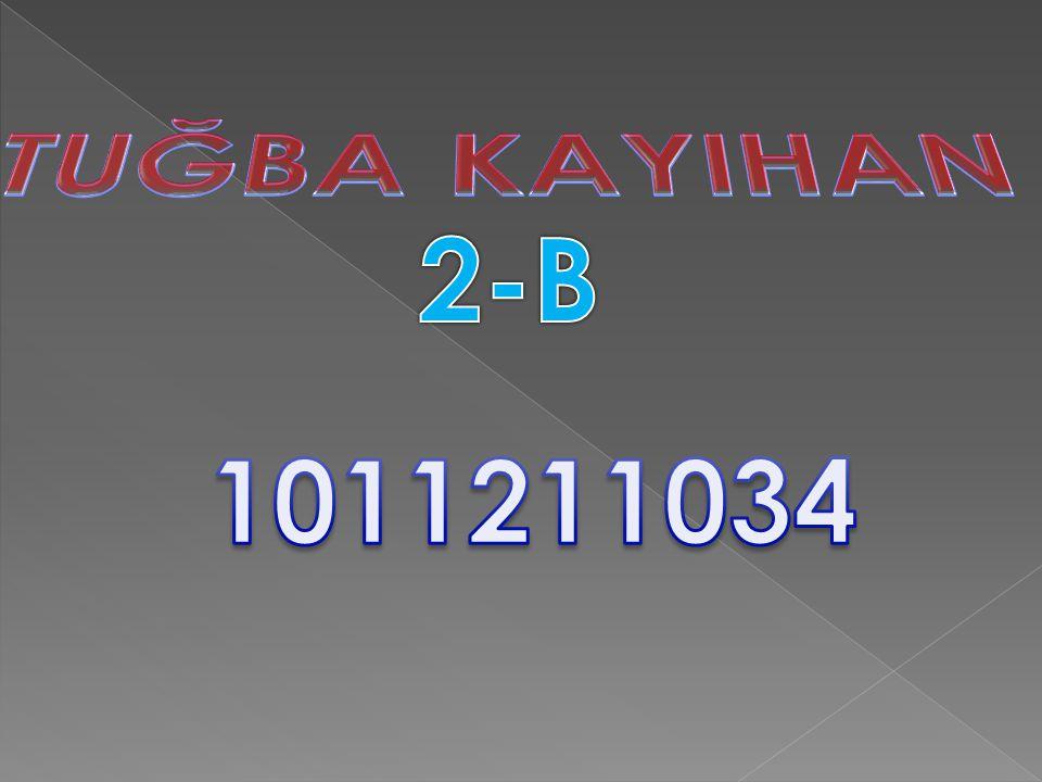 TUĞBA KAYIHAN 2-B 1011211034