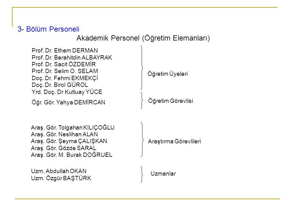 Akademik Personel (Öğretim Elemanları)