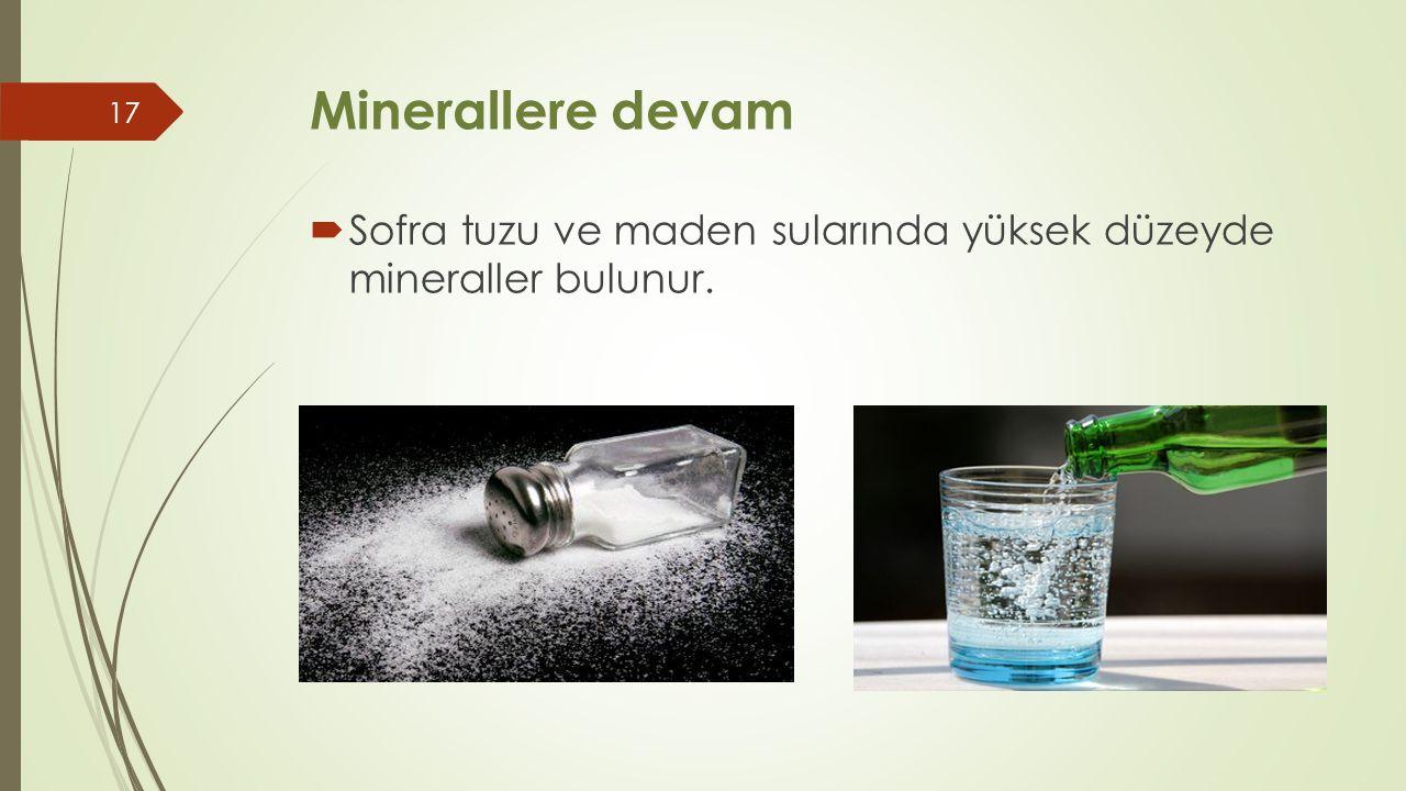 Minerallere devam Sofra tuzu ve maden sularında yüksek düzeyde mineraller bulunur.