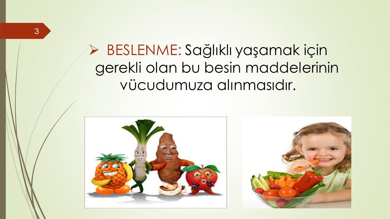BESLENME: Sağlıklı yaşamak için gerekli olan bu besin maddelerinin