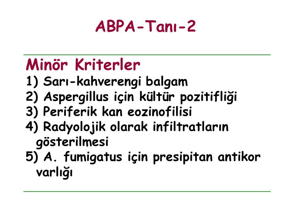 ABPA-Tanı-2 Minör Kriterler Sarı-kahverengi balgam