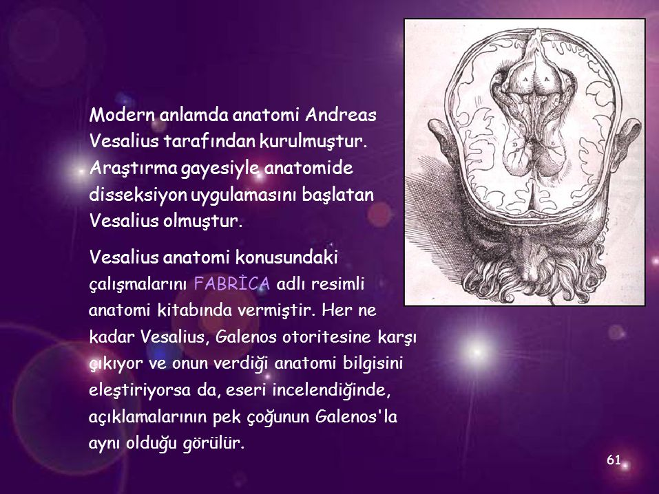 Modern anlamda anatomi Andreas Vesalius tarafından kurulmuştur.