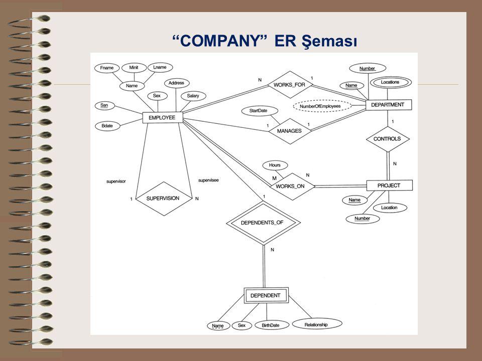 COMPANY ER Şeması