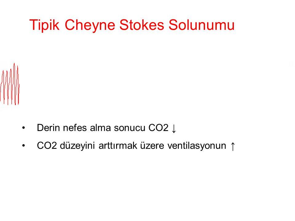 Tipik Cheyne Stokes Solunumu