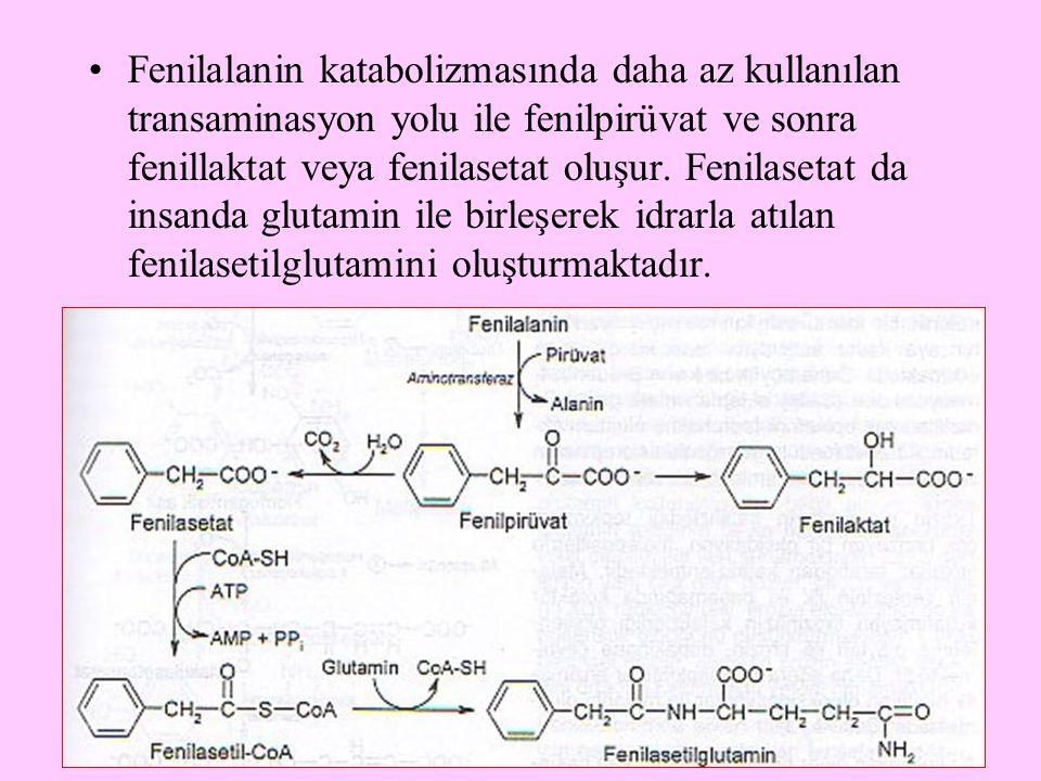 Fenilalanin katabolizmasında daha az kullanılan transaminasyon yolu ile fenilpirüvat ve sonra fenillaktat veya fenilasetat oluşur.