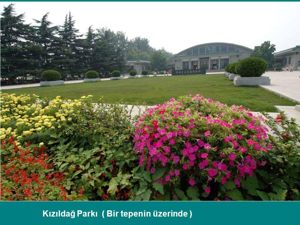 Kızıldağ Parkı ( Bir tepenin üzerinde )