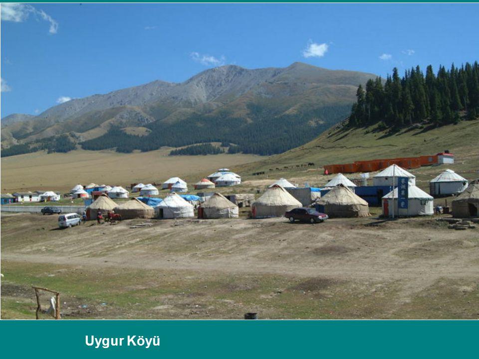 Uygur Köyü