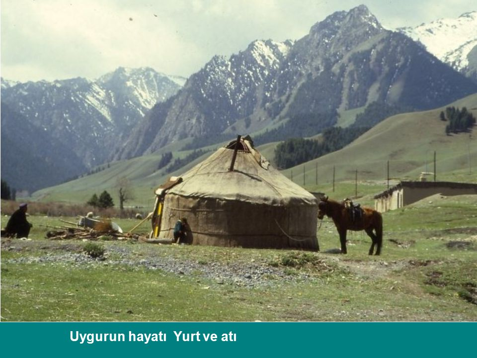 Uygurun hayatı Yurt ve atı