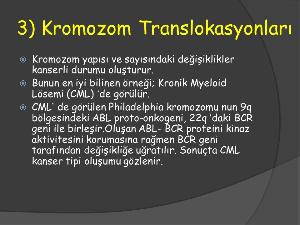3) Kromozom Translokasyonları