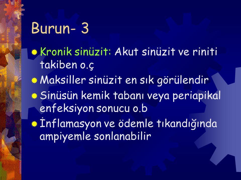 Burun- 3 Kronik sinüzit: Akut sinüzit ve riniti takiben o.ç