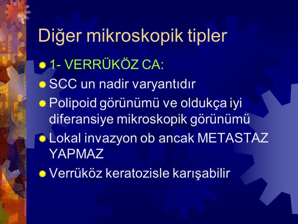 Diğer mikroskopik tipler