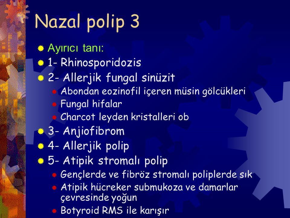 Nazal polip 3 Ayırıcı tanı: 1- Rhinosporidozis