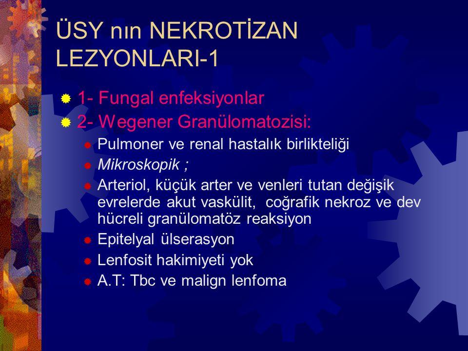 ÜSY nın NEKROTİZAN LEZYONLARI-1