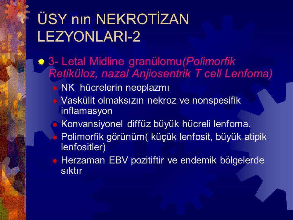 ÜSY nın NEKROTİZAN LEZYONLARI-2