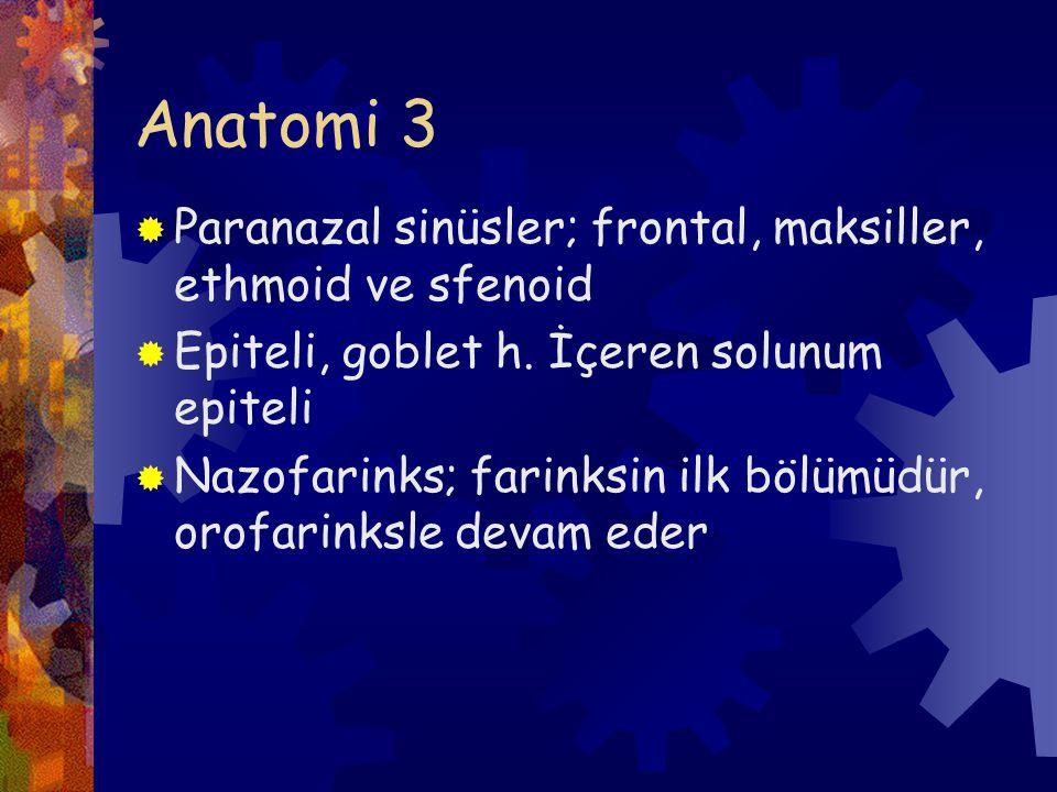 Anatomi 3 Paranazal sinüsler; frontal, maksiller, ethmoid ve sfenoid