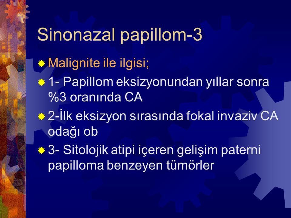Sinonazal papillom-3 Malignite ile ilgisi;