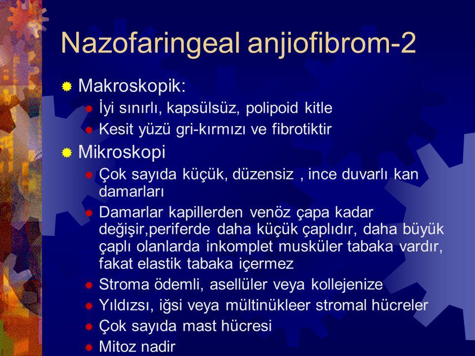 Nazofaringeal anjiofibrom-2