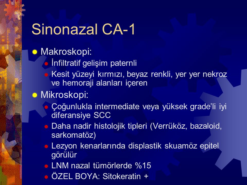 Sinonazal CA-1 Makroskopi: Mikroskopi: İnfiltratif gelişim paternli