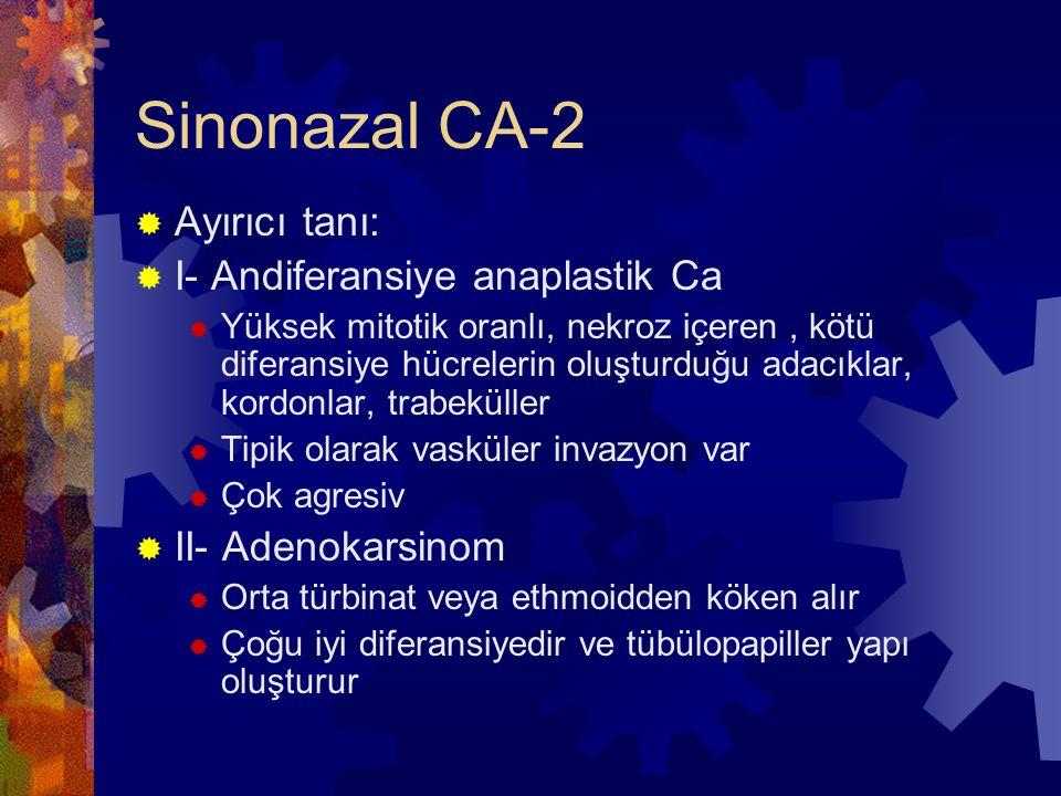 Sinonazal CA-2 Ayırıcı tanı: I- Andiferansiye anaplastik Ca