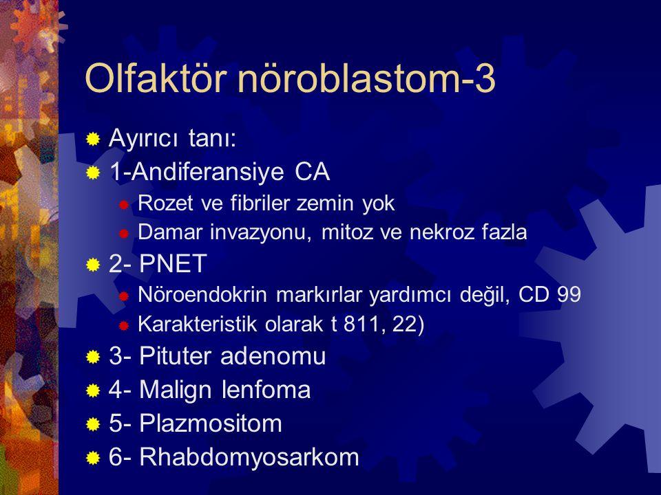 Olfaktör nöroblastom-3