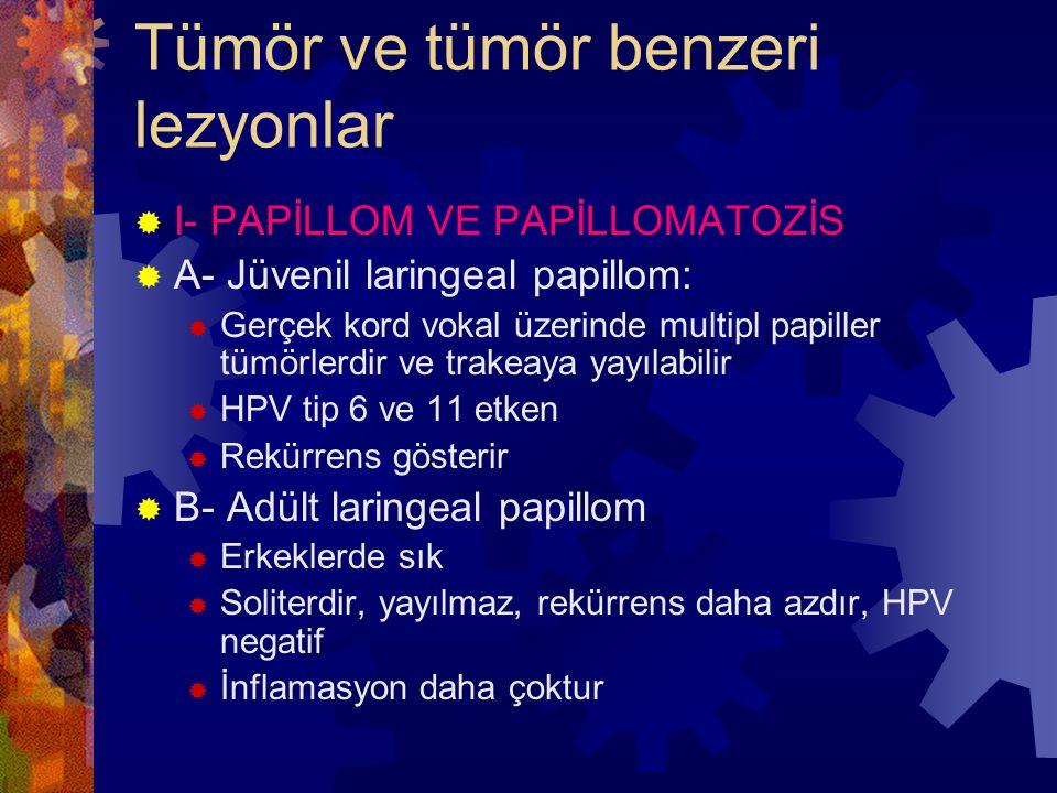 Tümör ve tümör benzeri lezyonlar