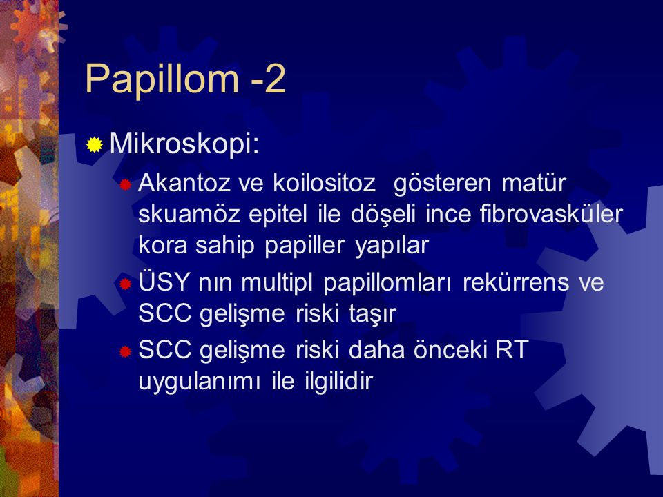 Papillom -2 Mikroskopi:
