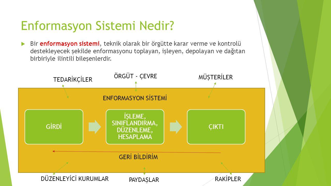 Enformasyon Sistemi Nedir