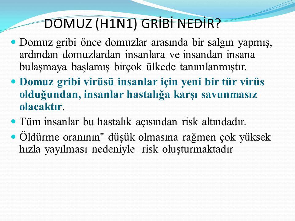 DOMUZ (H1N1) GRİBİ NEDİR