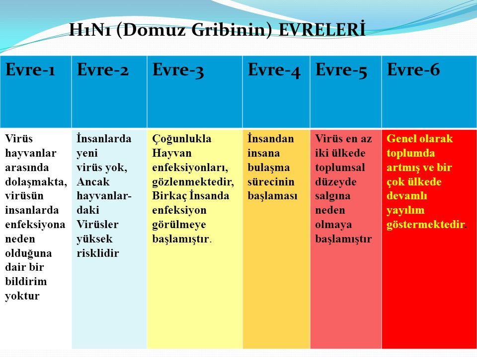 H1N1 (Domuz Gribinin) EVRELERİ Evre-1 Evre-2 Evre-3 Evre-4 Evre-5