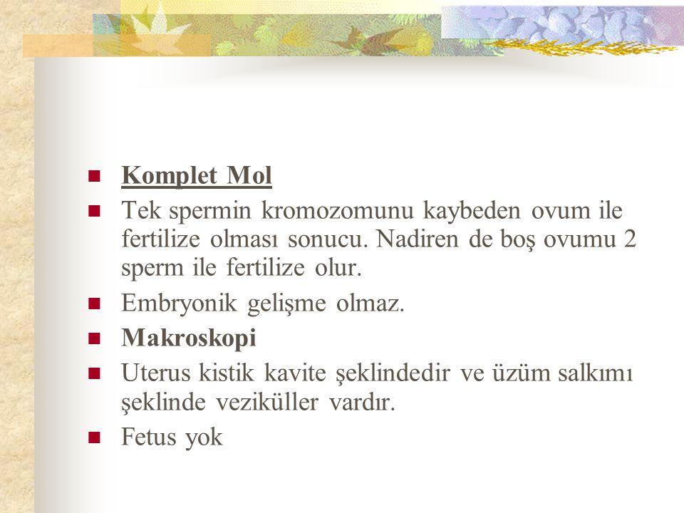 Komplet Mol Tek spermin kromozomunu kaybeden ovum ile fertilize olması sonucu. Nadiren de boş ovumu 2 sperm ile fertilize olur.
