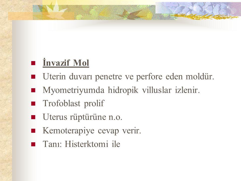 İnvazif Mol Uterin duvarı penetre ve perfore eden moldür. Myometriyumda hidropik villuslar izlenir.