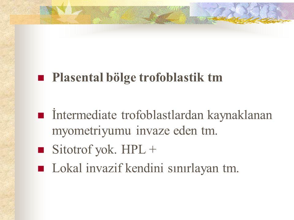 Plasental bölge trofoblastik tm
