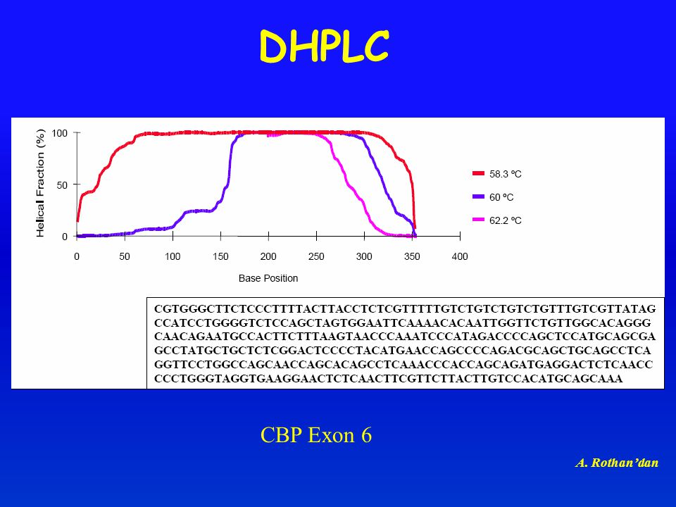 DHPLC CBP Exon 6 A. Rothan'dan