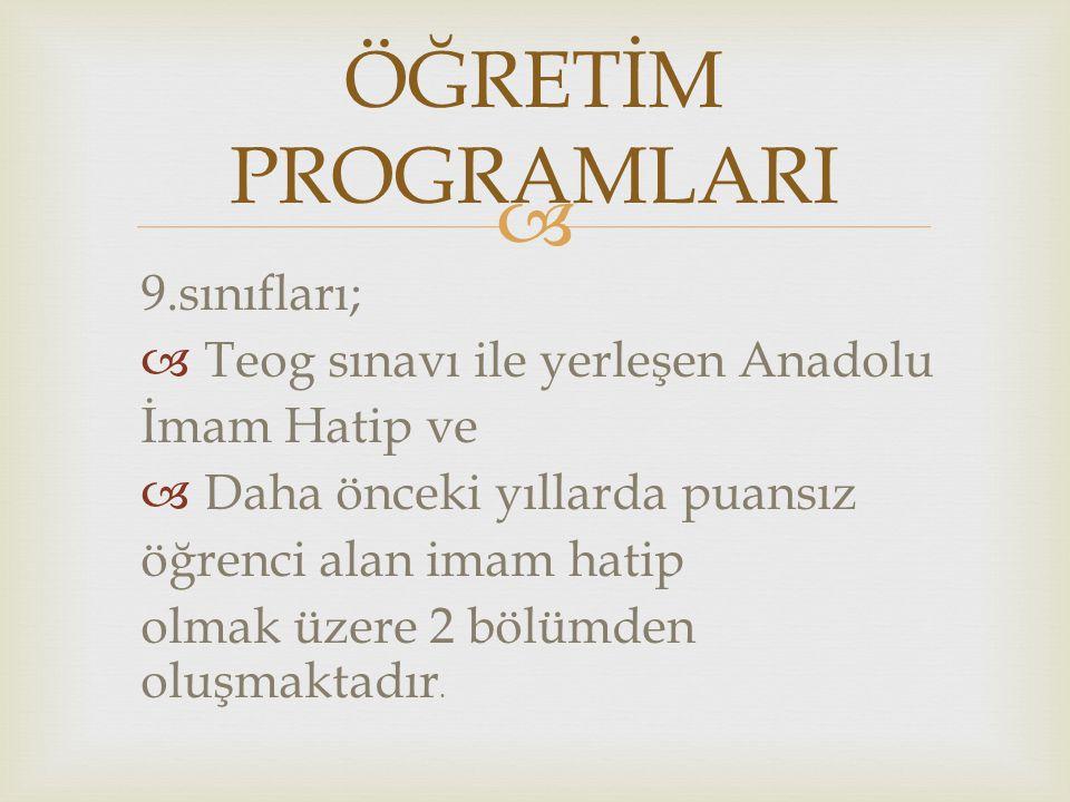 ÖĞRETİM PROGRAMLARI 9.sınıfları; Teog sınavı ile yerleşen Anadolu