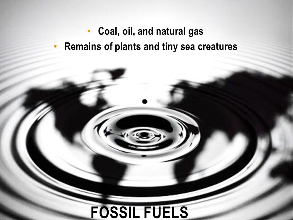 Coal, oil, and natural gas Remains of plants and tiny sea creatures