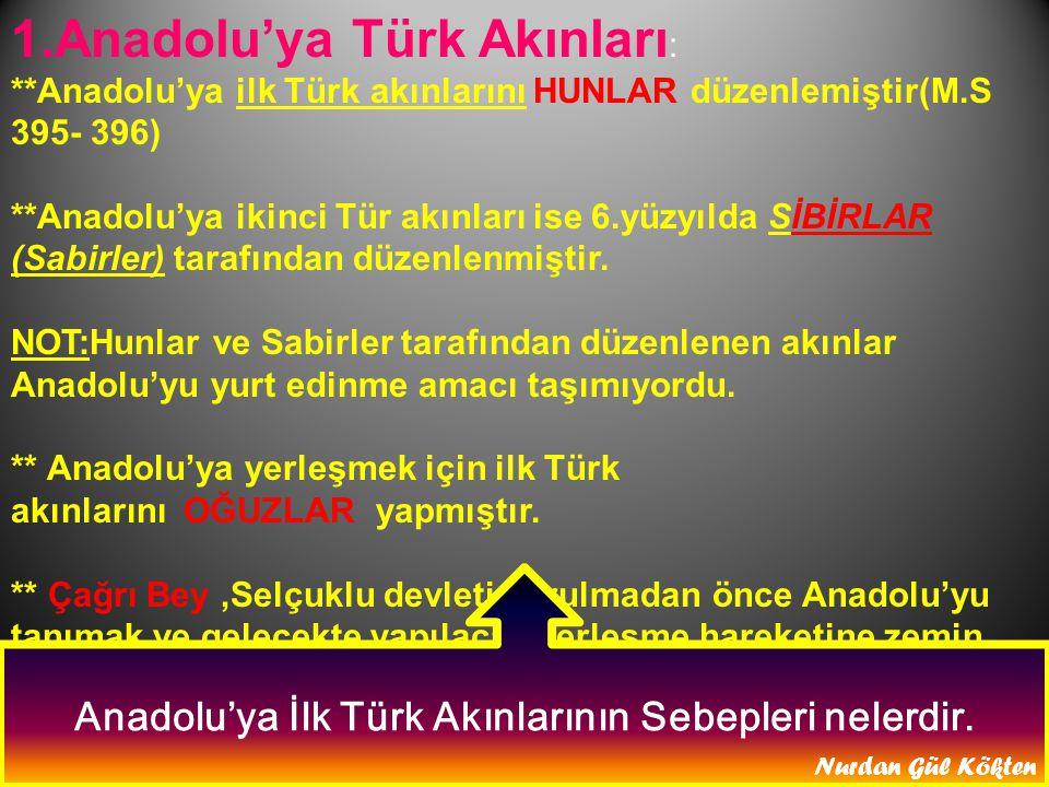 Anadolu'ya İlk Türk Akınlarının Sebepleri nelerdir.