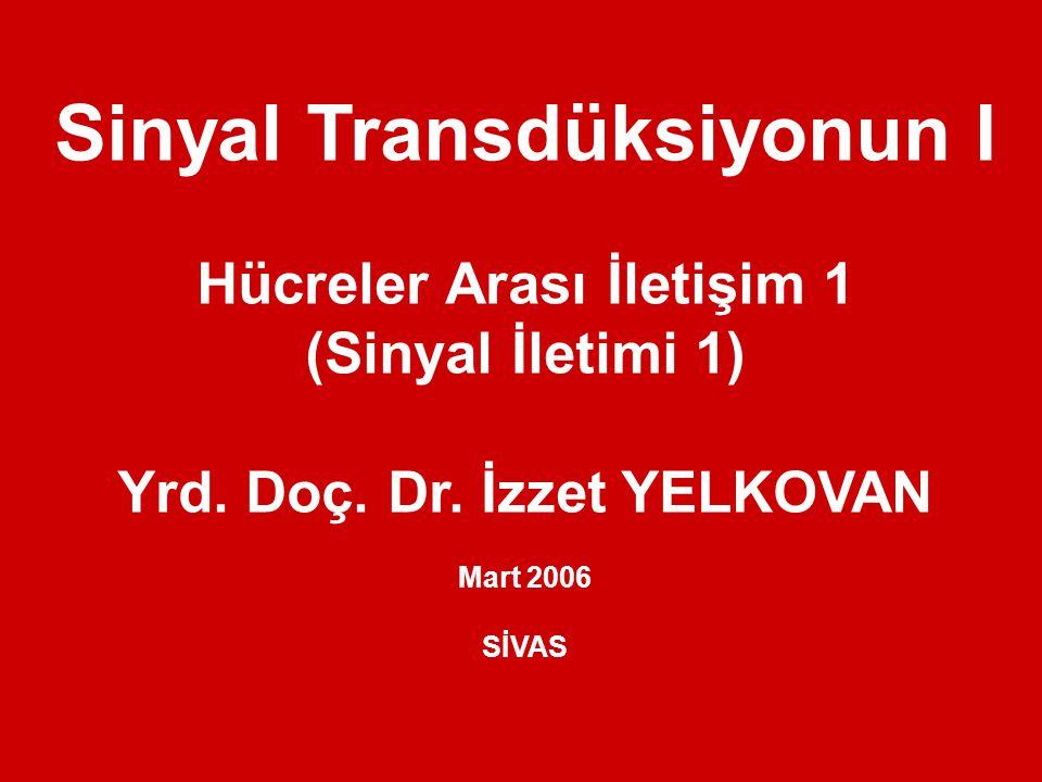 Sinyal Transdüksiyonun I