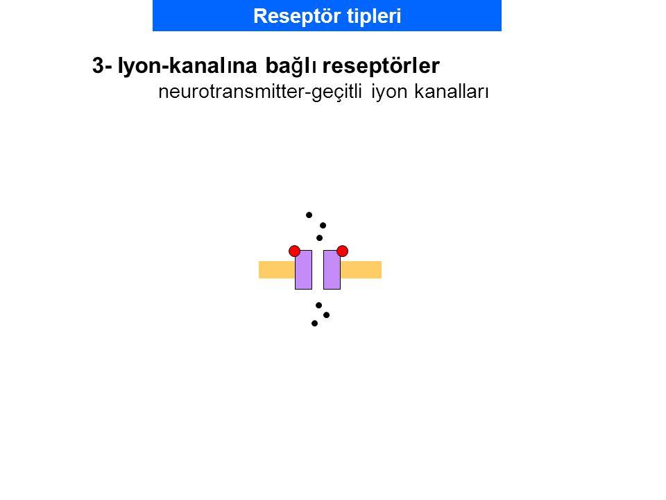 3- Iyon-kanalına bağlı reseptörler