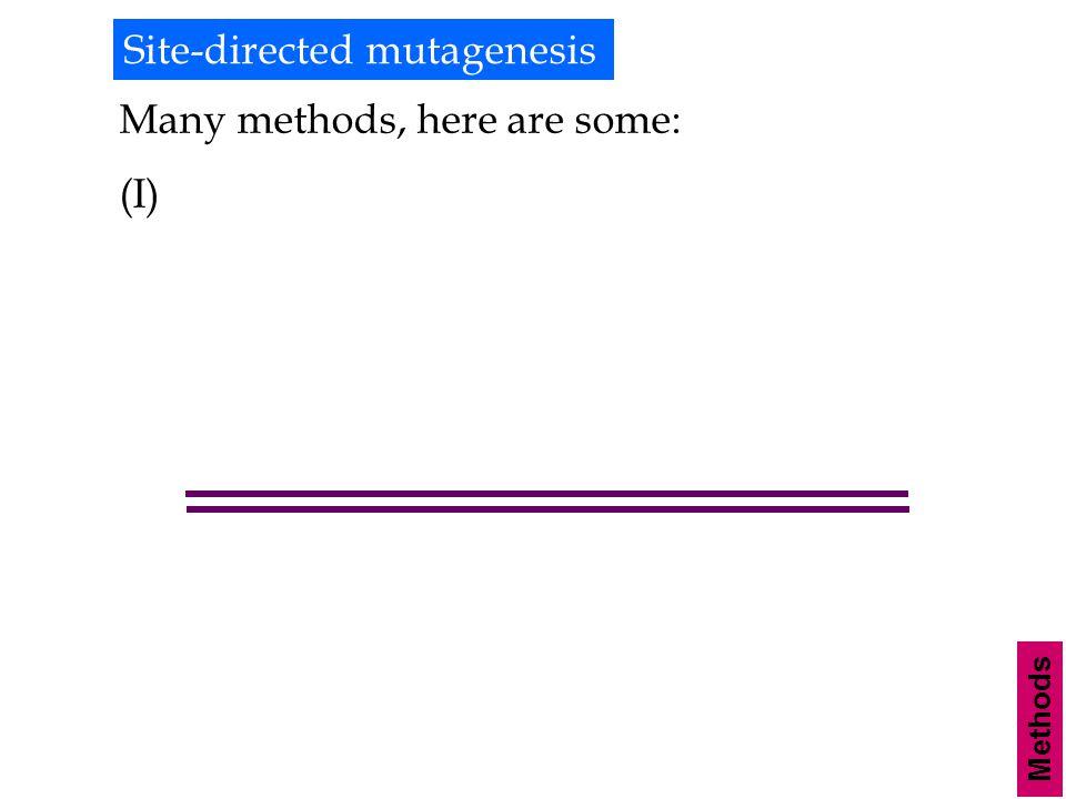 Site-directed mutagenesis